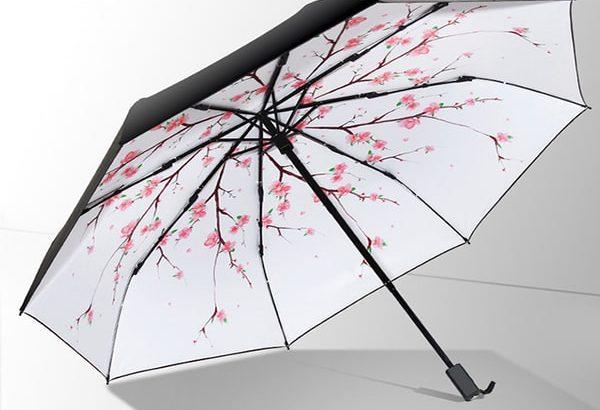 Cửa hàng bán ô dù cầm tay uy tín